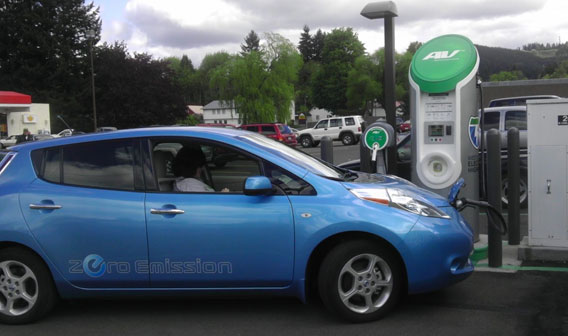 Nissan Leaf Owner